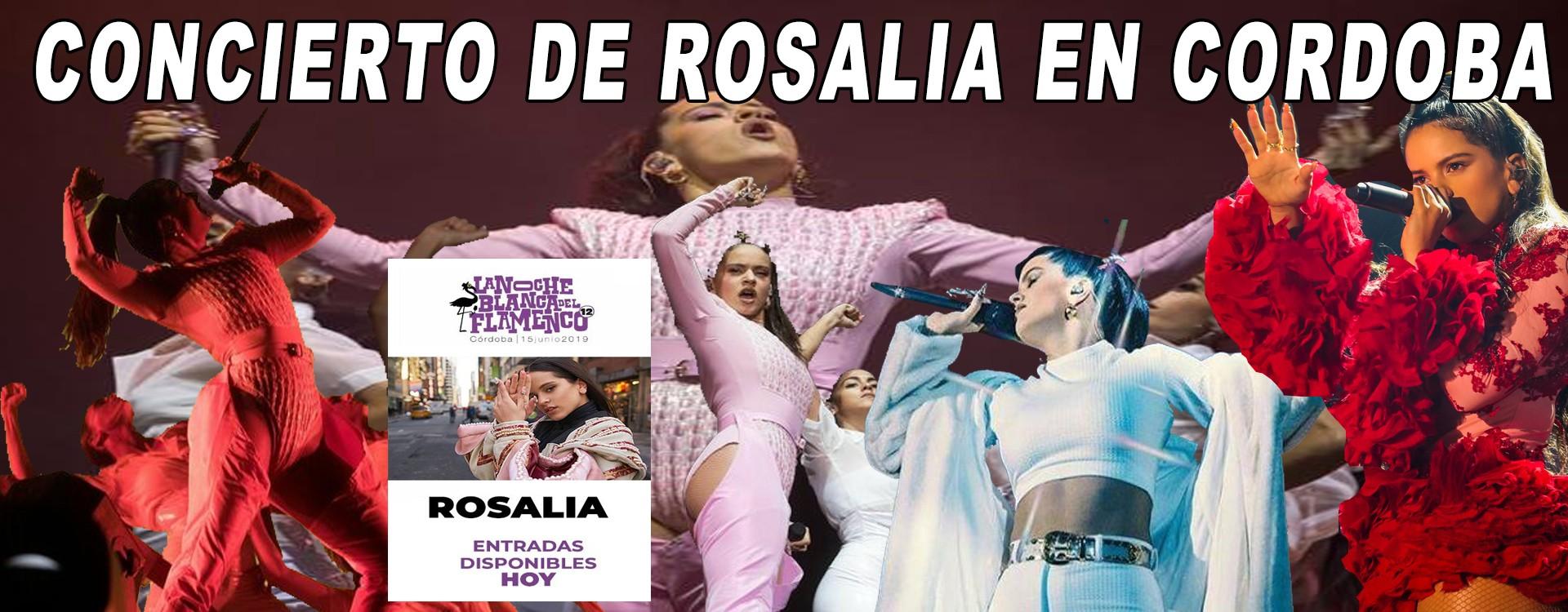 CONCIERTO DE ROSALIA EN CORDOBA LOS VIDEOS COMPLETO